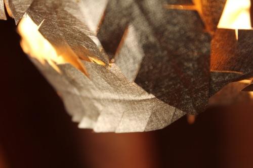 DS+Detail1.jpg