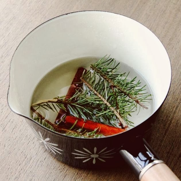 A Winter Recipe | Ways To Make Your Home Smell Like Christmas | How to Make Your Home Smell Nice