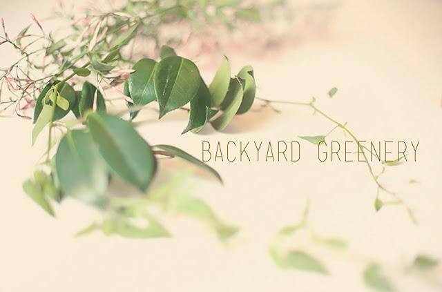 backyard+greenery.JPG