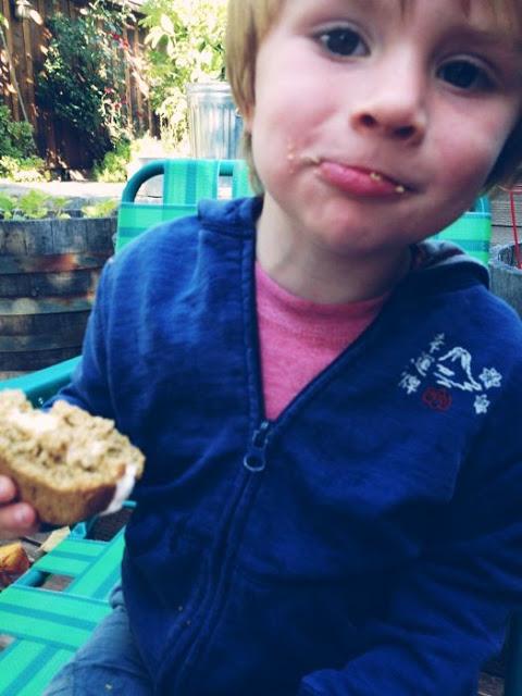 wylie-eats-cookies.jpg