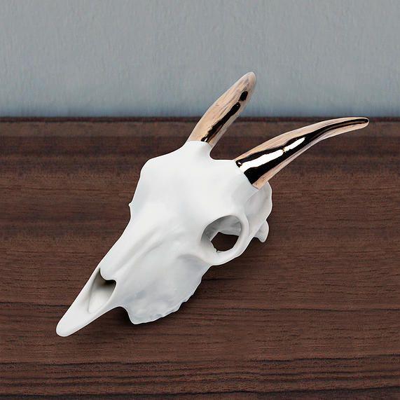Beetle &Flor - Porcelain goat skull with 14k gold plated horns