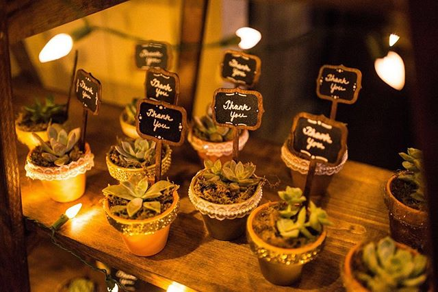 "Adorable favor alert! Evan and Kimberly had the cutest succulent favors for their guests, encouraging to ""Let love grow"". #weddingfavors #succulentfavors #letlovegrow #elementsofstylesd • 📸@jefflewis @realphotosd"