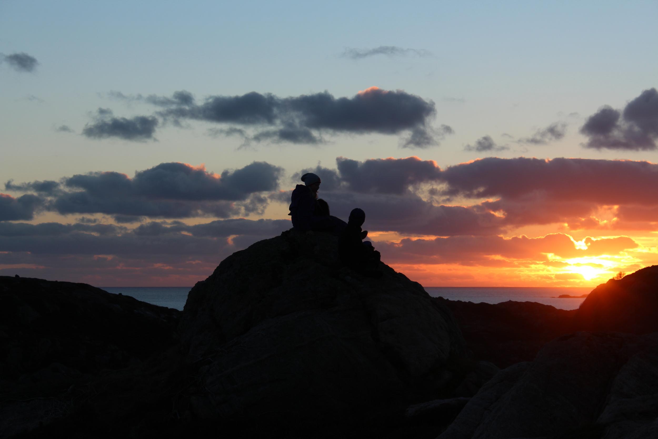 Foto: Anne Grønsund #Villroser