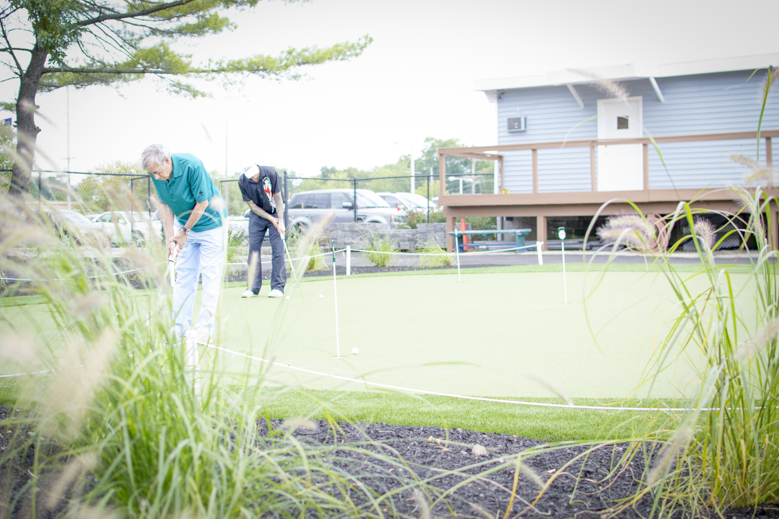 Putting Green - From Bushes 1.jpg