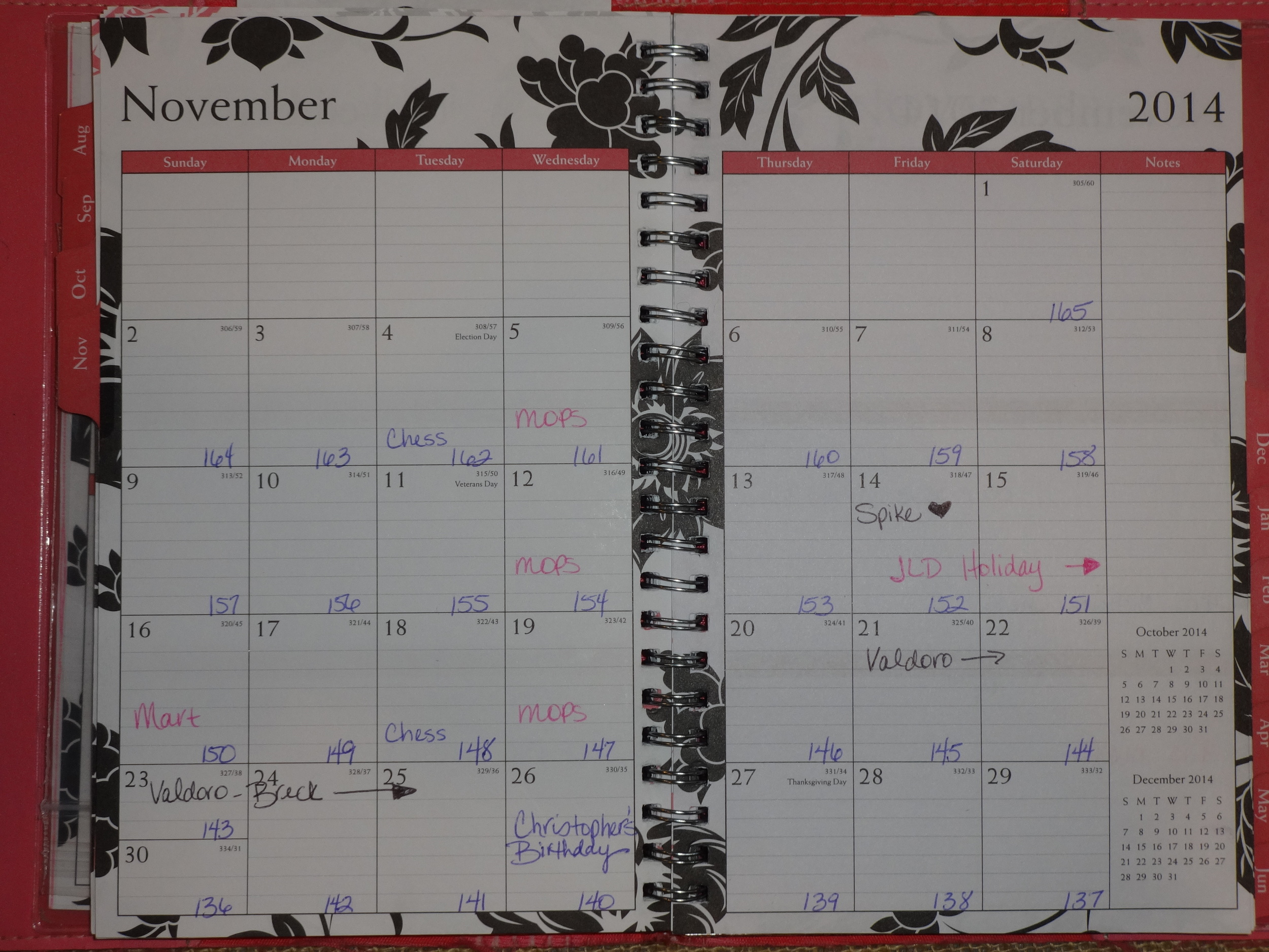 The paper version of my calendar. As you can see we went up to Breckenridge, I had the Junior League of Denver Holiday Mart, my son Christopher had a birthdayand my sweet cat Spike died on the 14th. As of the end of the month I had 136 days left in my countdown!