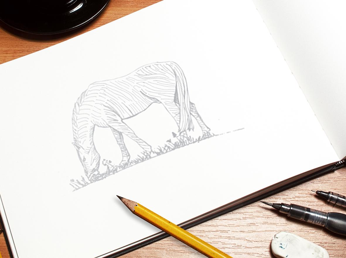 webnew sketch mockup4.jpg