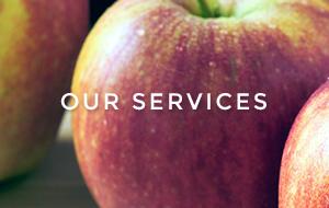 home-tile-services.jpg