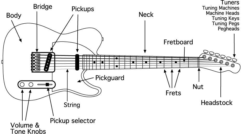 Electric Guitar Parts
