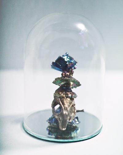 Rat Skull, Bismuth, Glass, Mirror