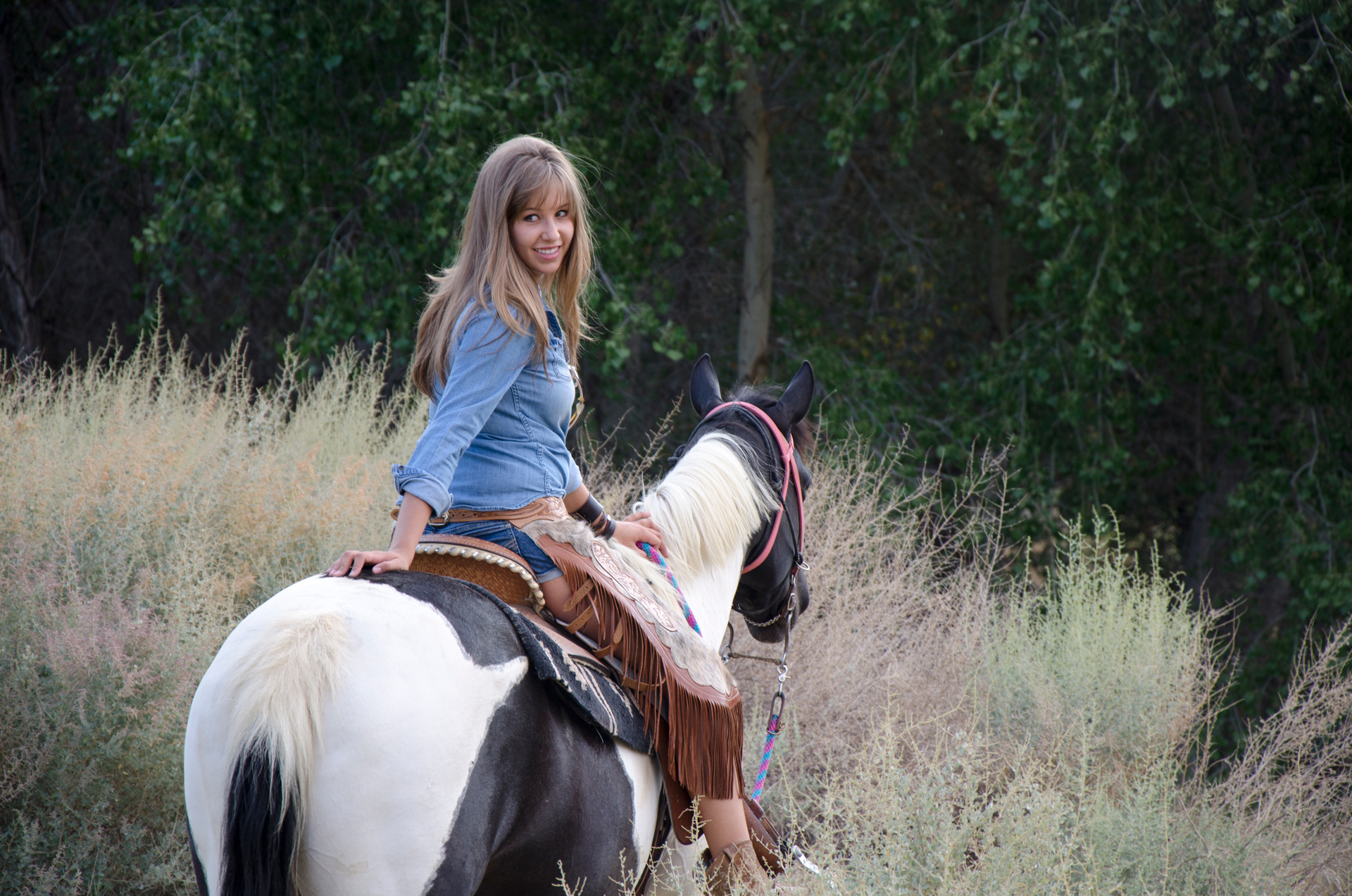 TAYLOR | HORSE TRAINER