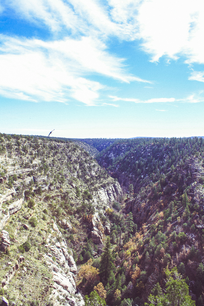 Looking south into Walnut Canyon. I don't know why all of the photos I saw while researching it made it appear so much more shallow than this!