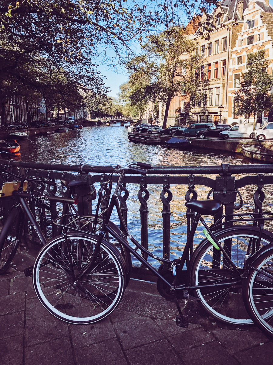 Picture-perfect views like this are why I  love  Amsterdam.