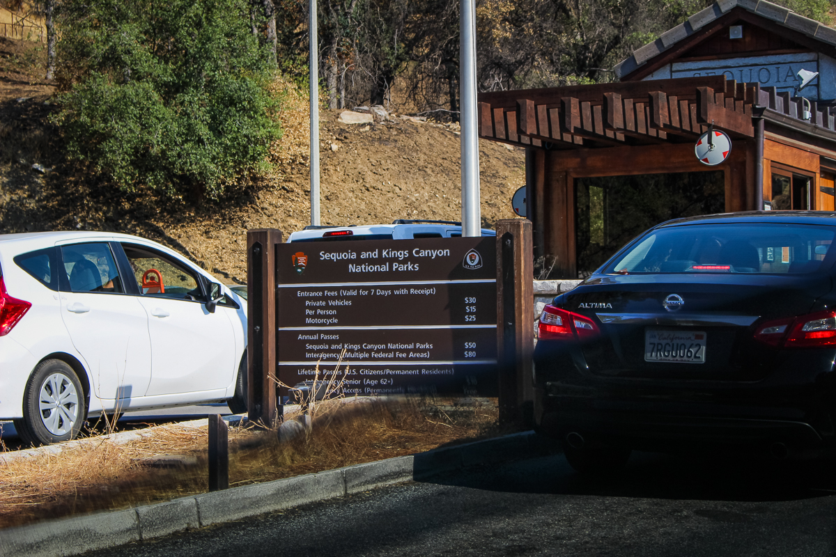 Welcome to…Sequoia National Park!  [cue John Williams]