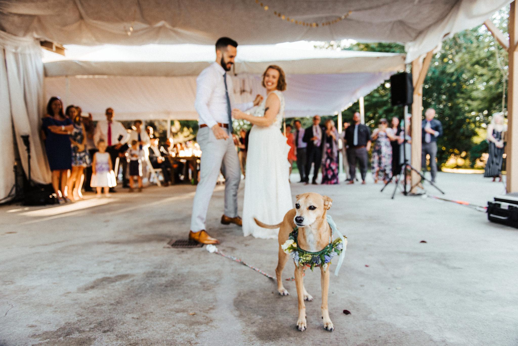 Amy Steven Seattle Wedding Photographer Vishal Goklani_054.jpg