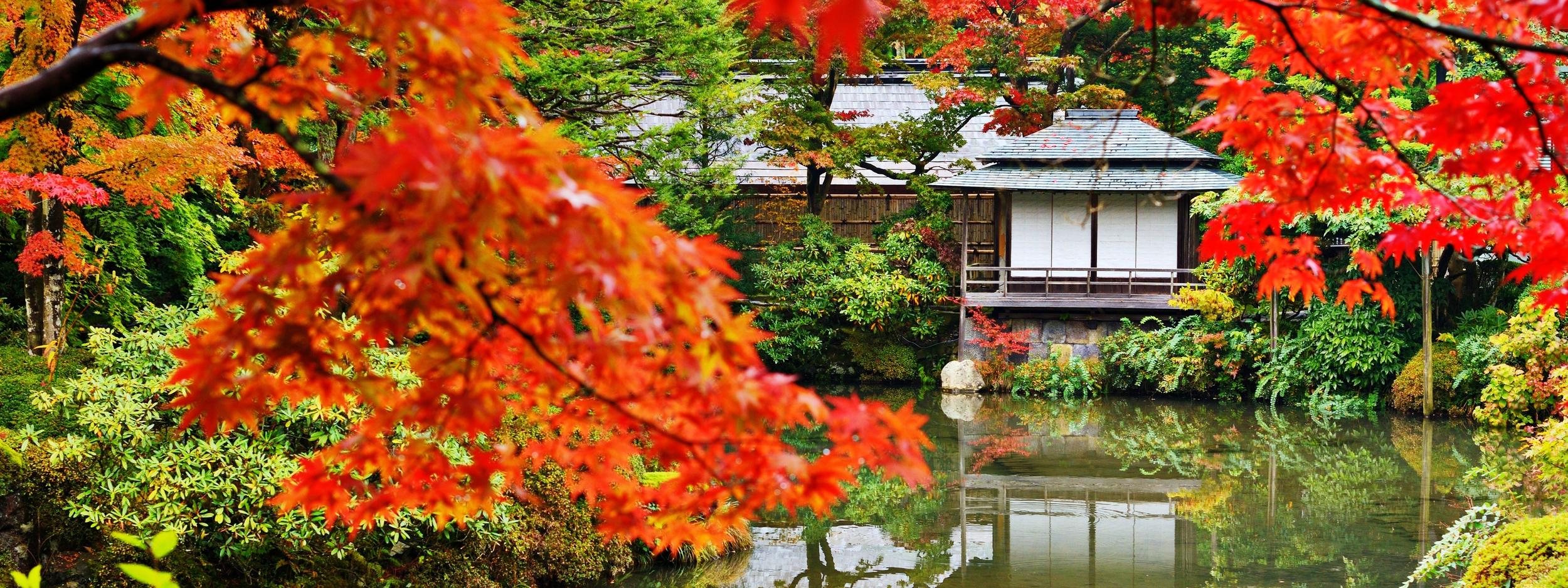 bigstock-Japanese-garden-in-Nikko-Japa-48490097 copy.jpg