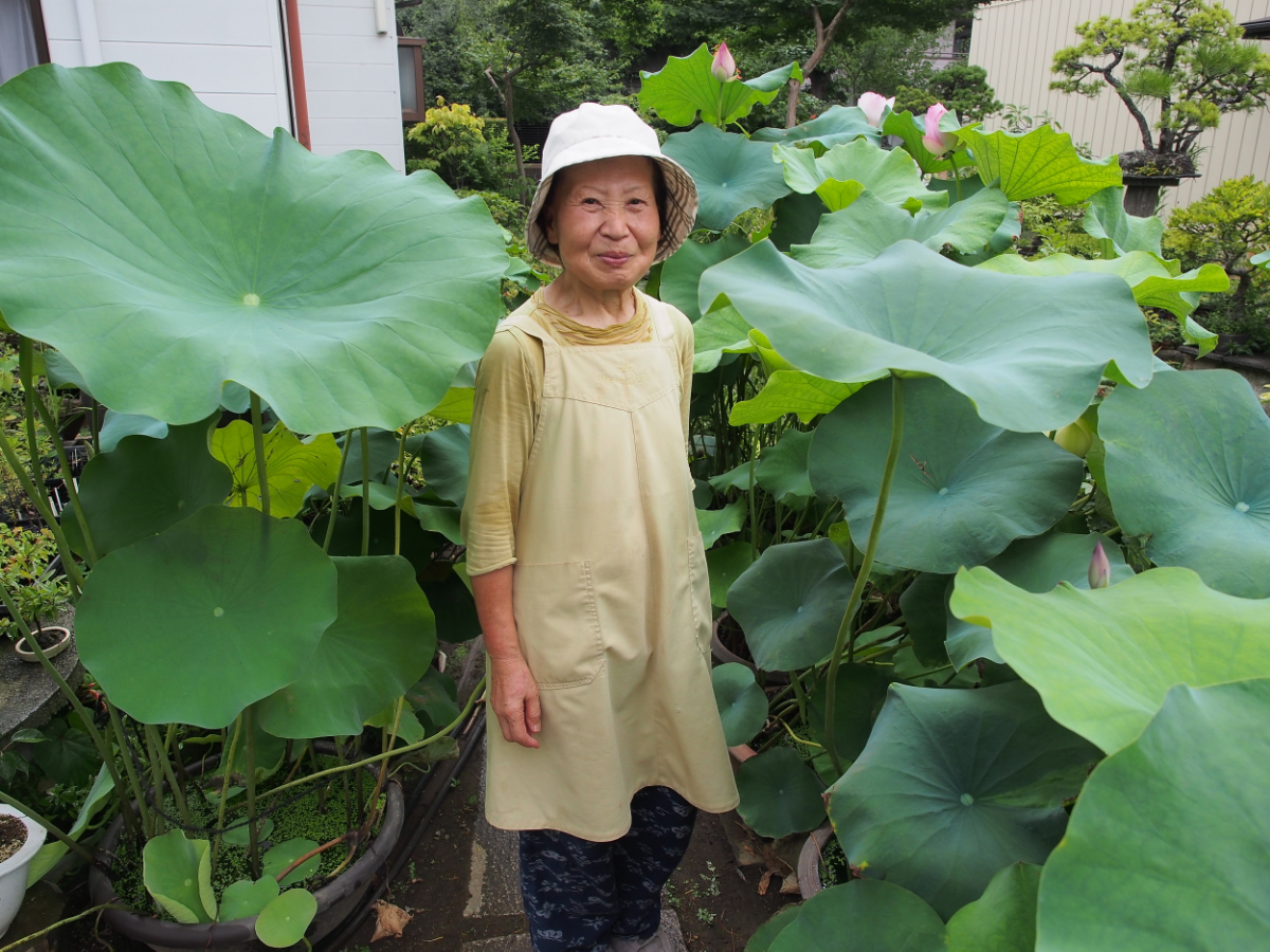 Rumiko Murata greeting us with a warm smile by some bonsai-style lotuses, which her son cultivates as a hobby. ©TOKI