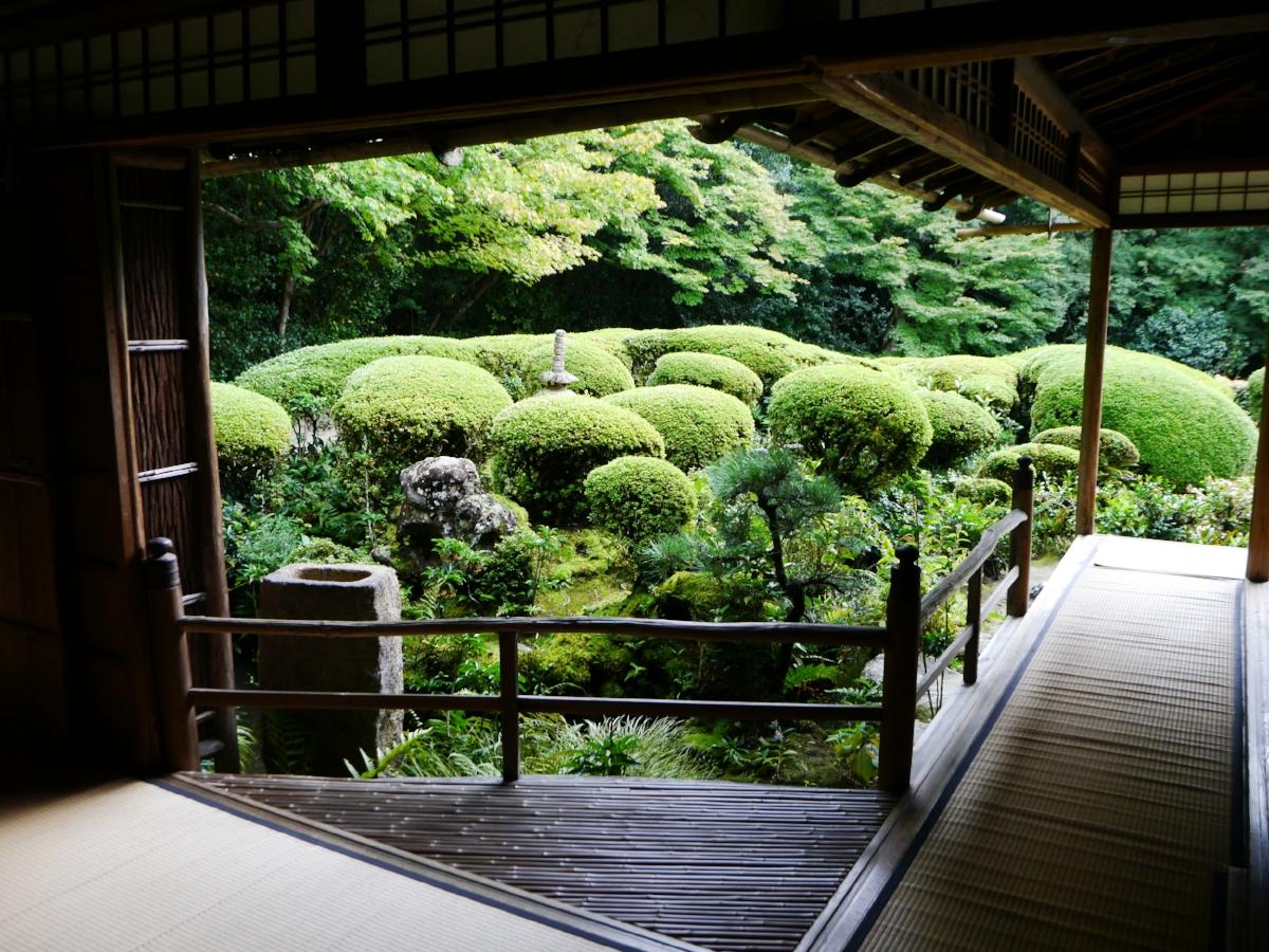 Garden4.jpg