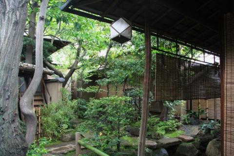 tea ceremony link.jpg