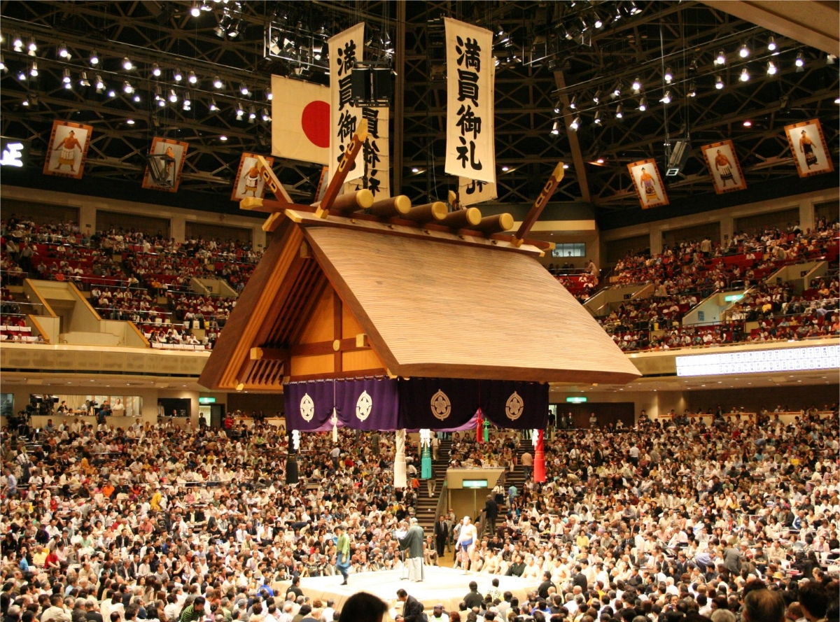 sumo article.jpg