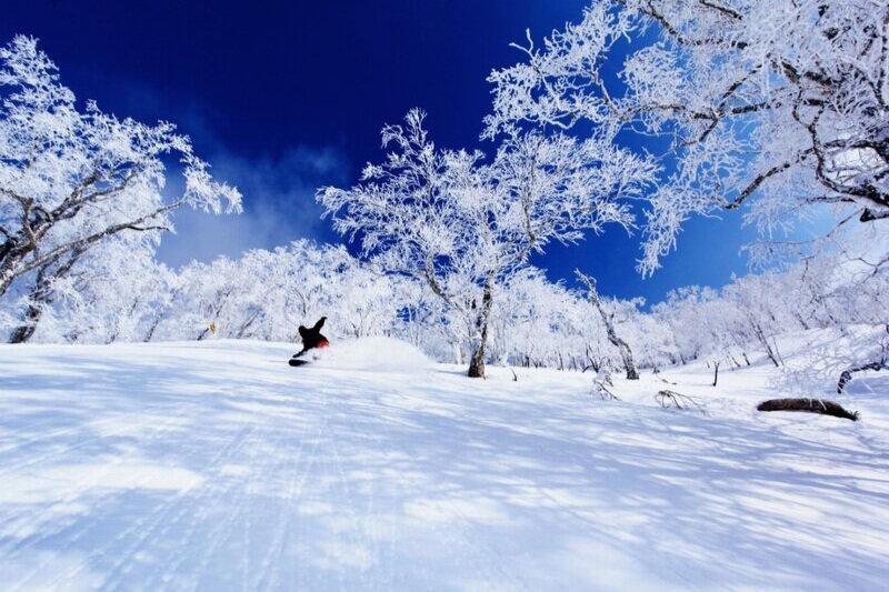 snow+country.jpg