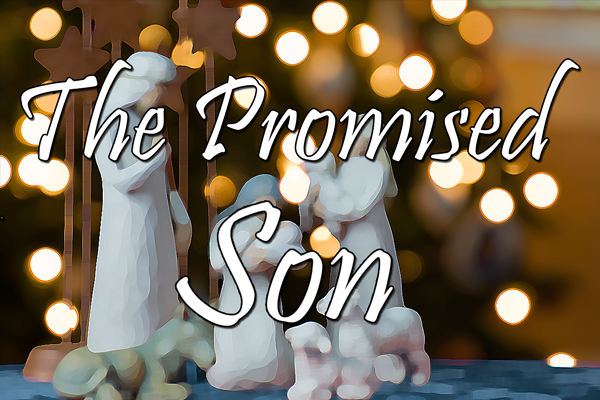 The Promised Son Series Logo