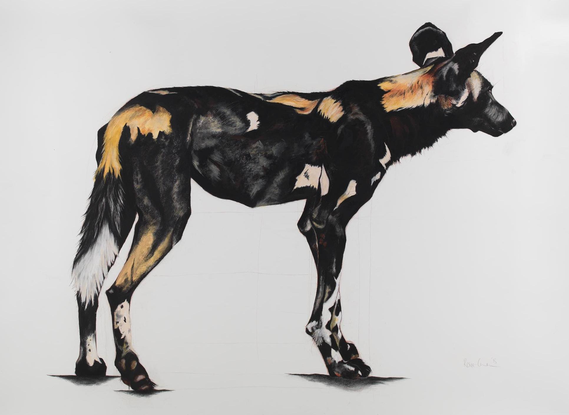 21. LARGE AFRICAN WILD DOG IV