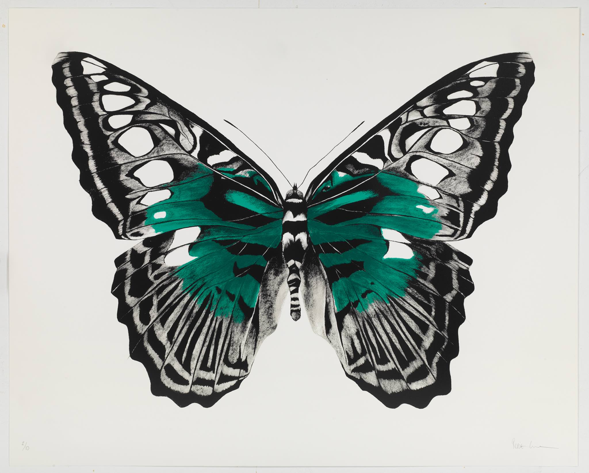 Butterfly green silkscreen.jpg