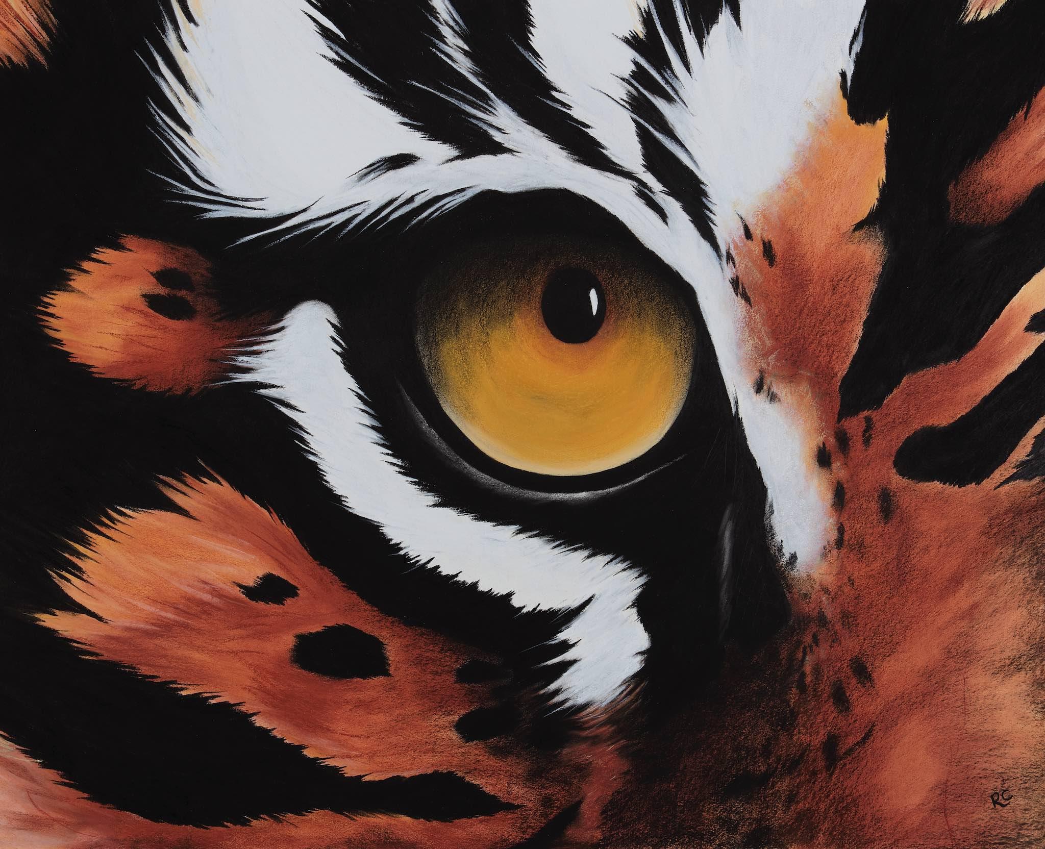 Abstract Tiger Eye.jpg