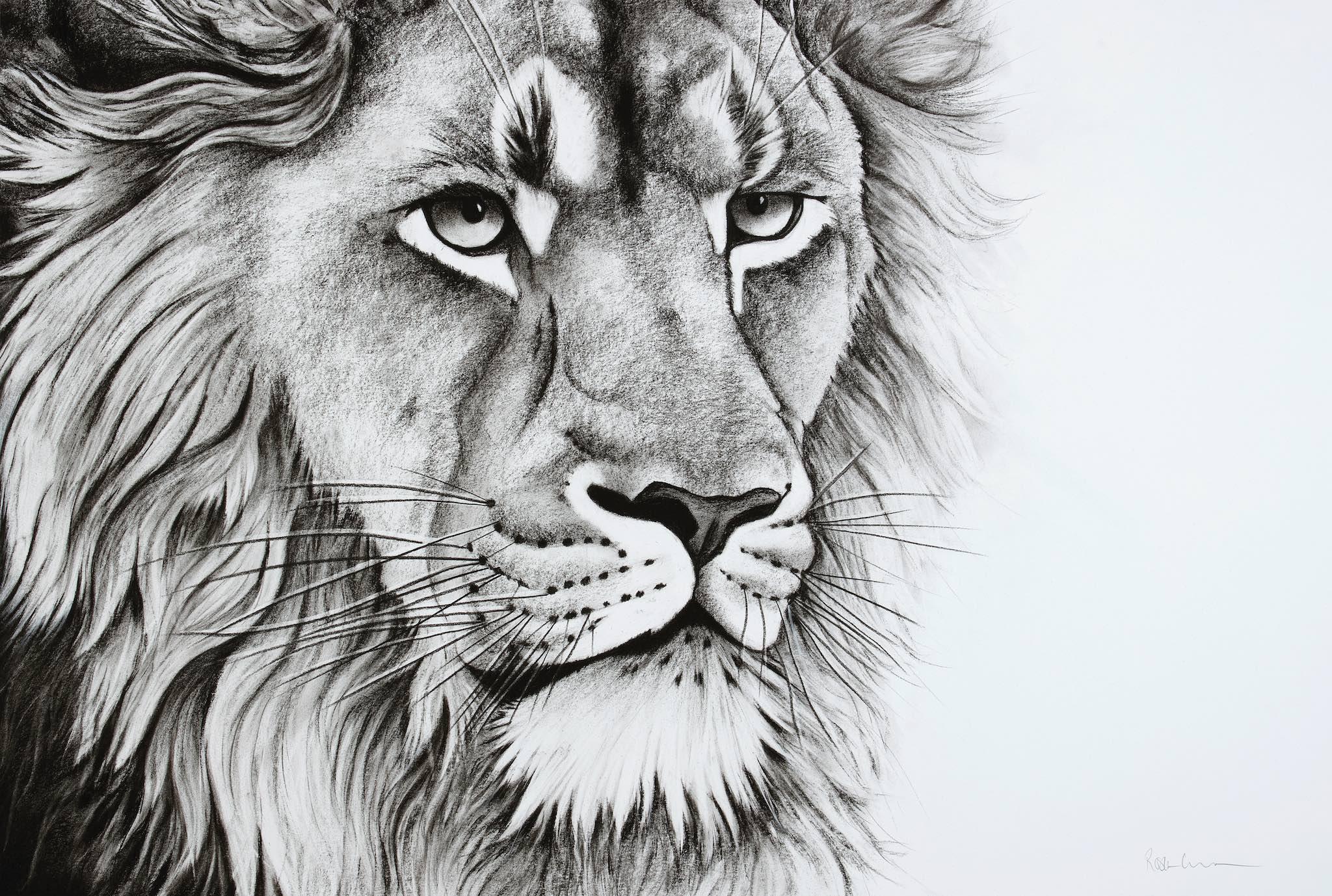 Aslan Looking.jpg