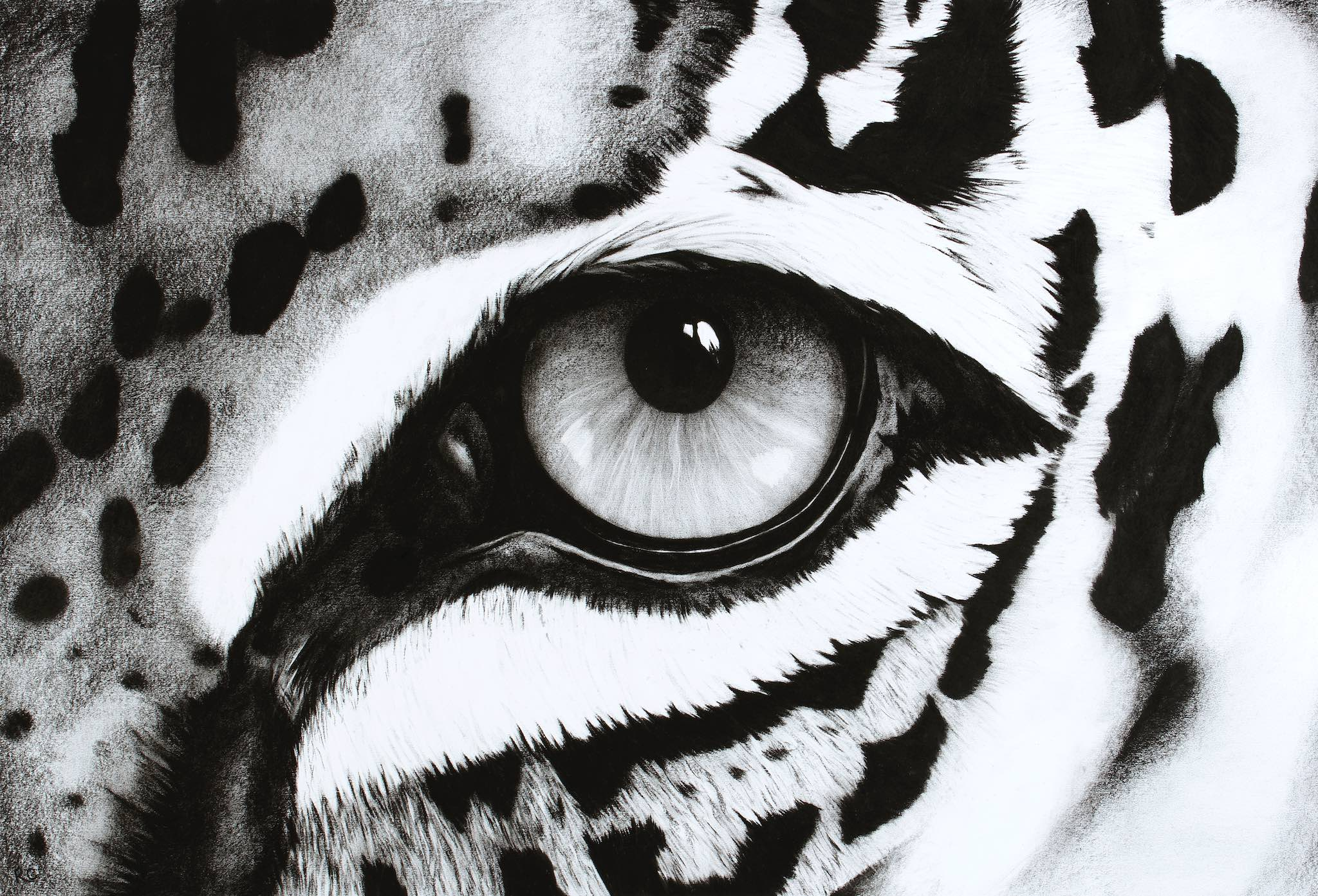 Black & White Abstract Leopard Eye.jpg