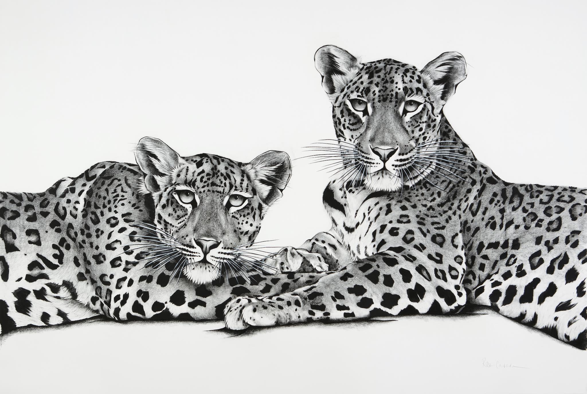 Jawai Leopards - Mother & Cub.jpg