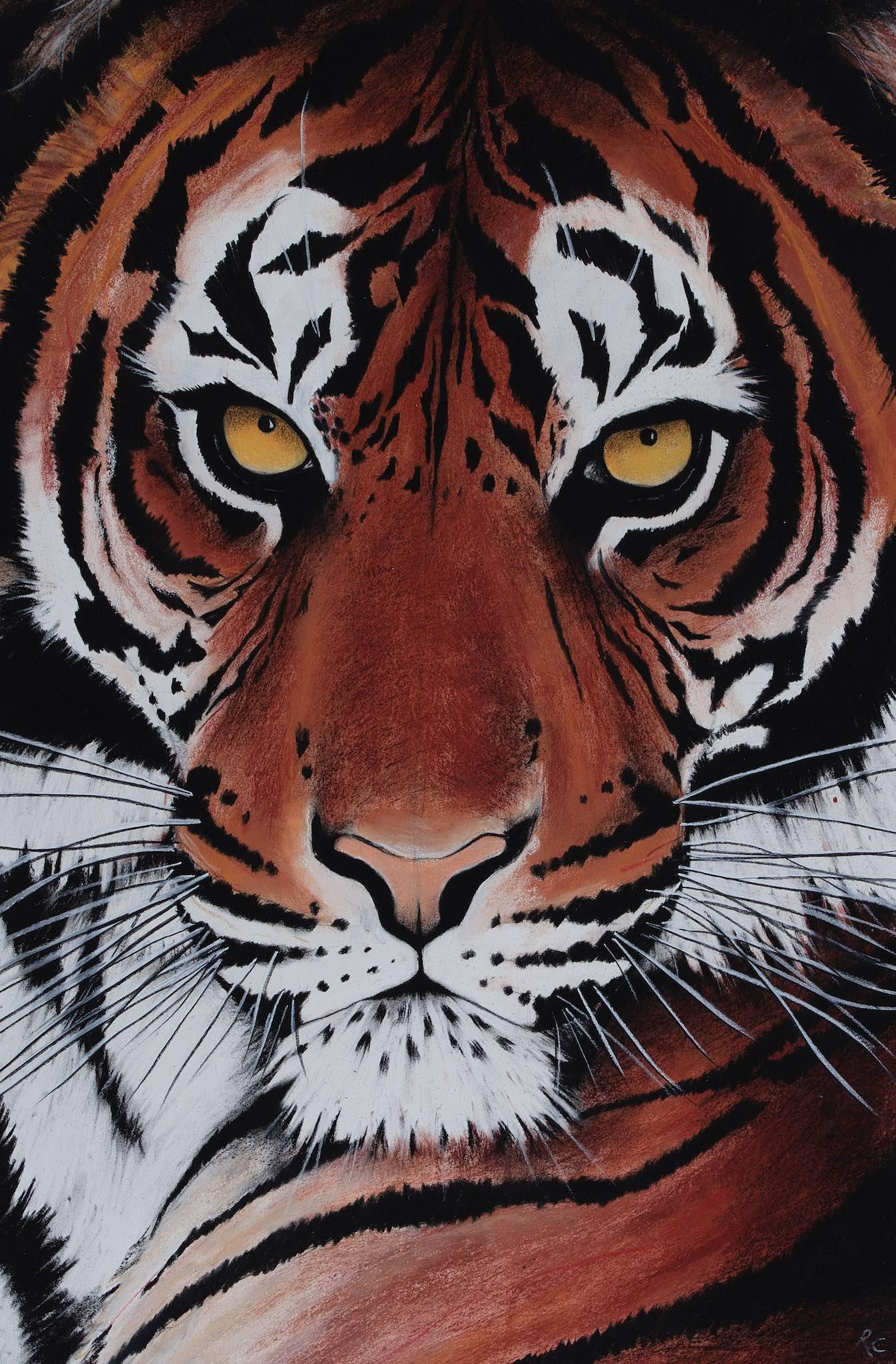 Moon Tiger.jpg