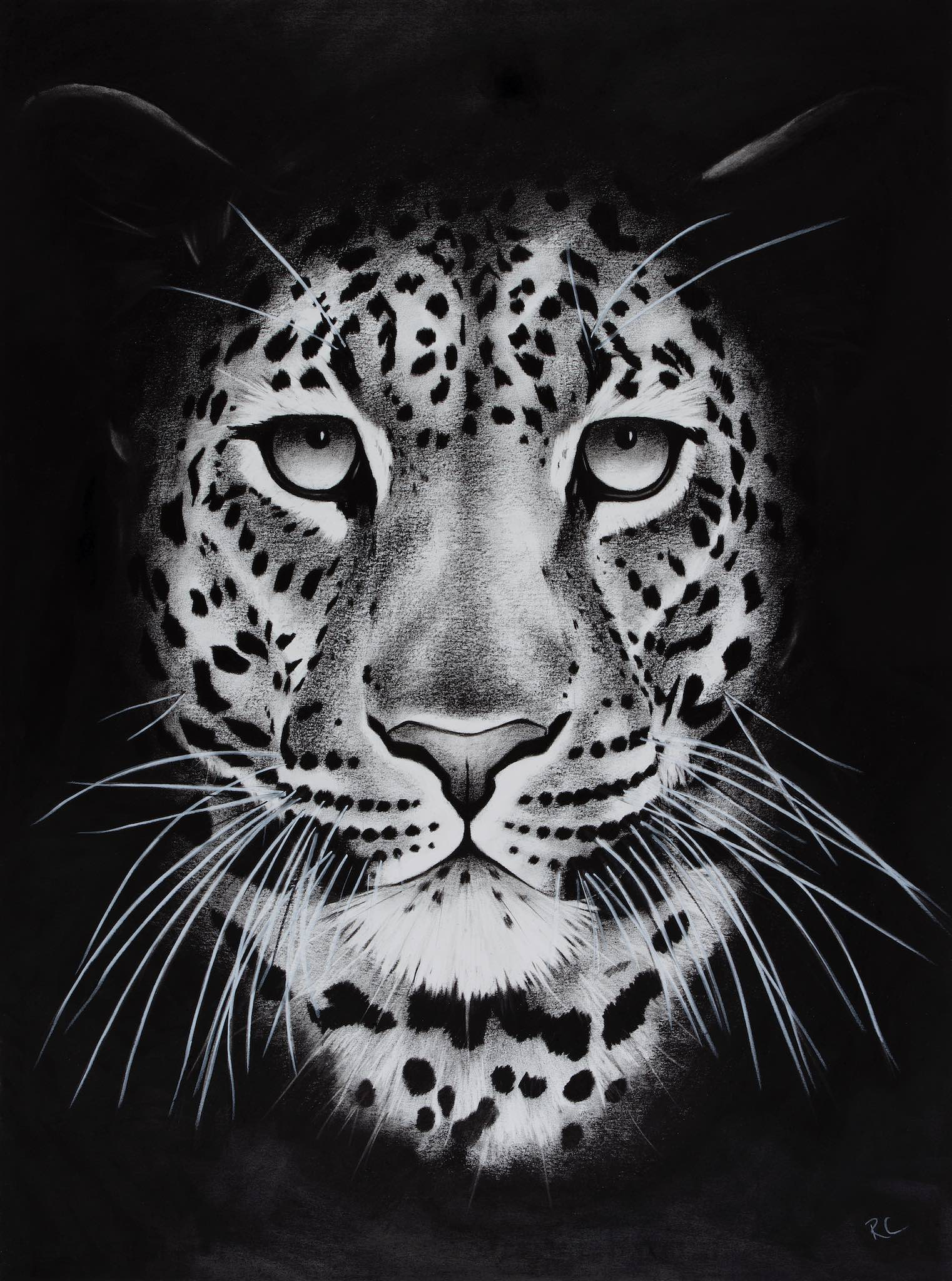 Night Leopard 2.jpg