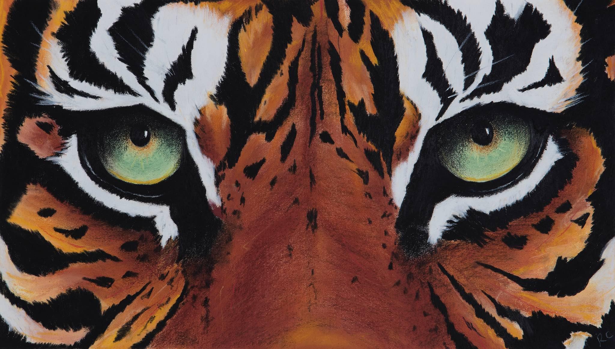 Small Tiger Eyes.jpg