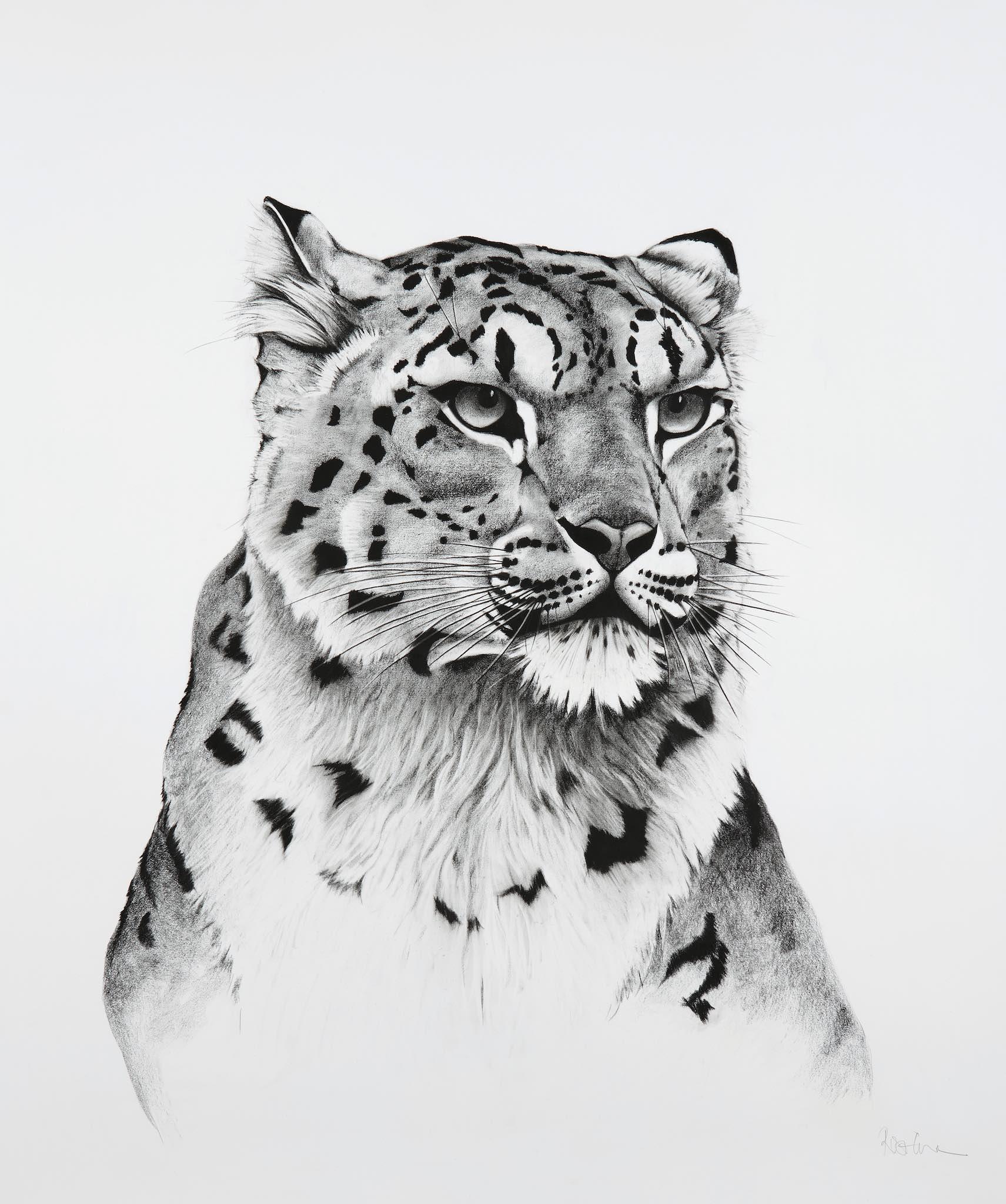 Snow Leopard Turned.jpg