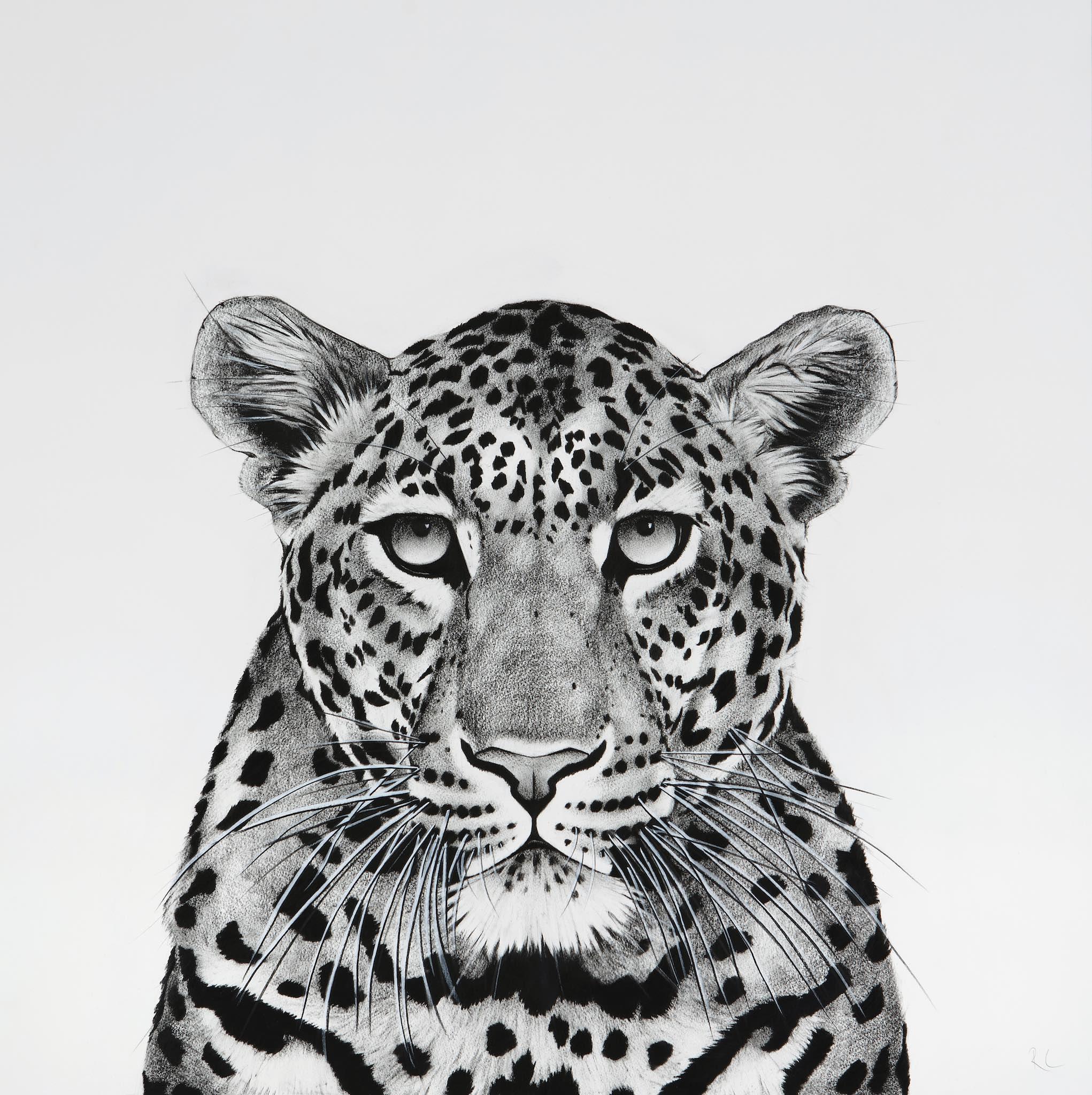 Window Leopard.jpg