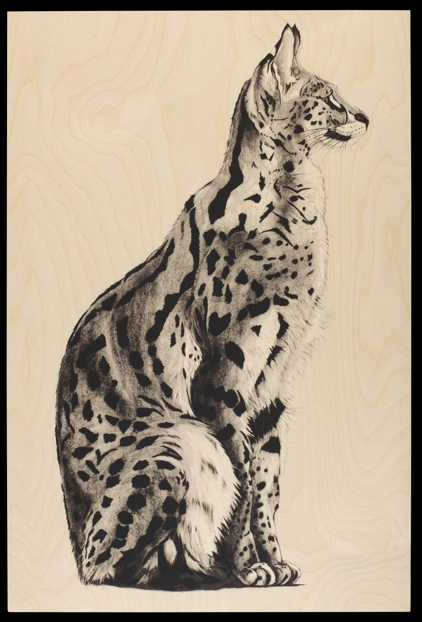 wood serval 1.jpg