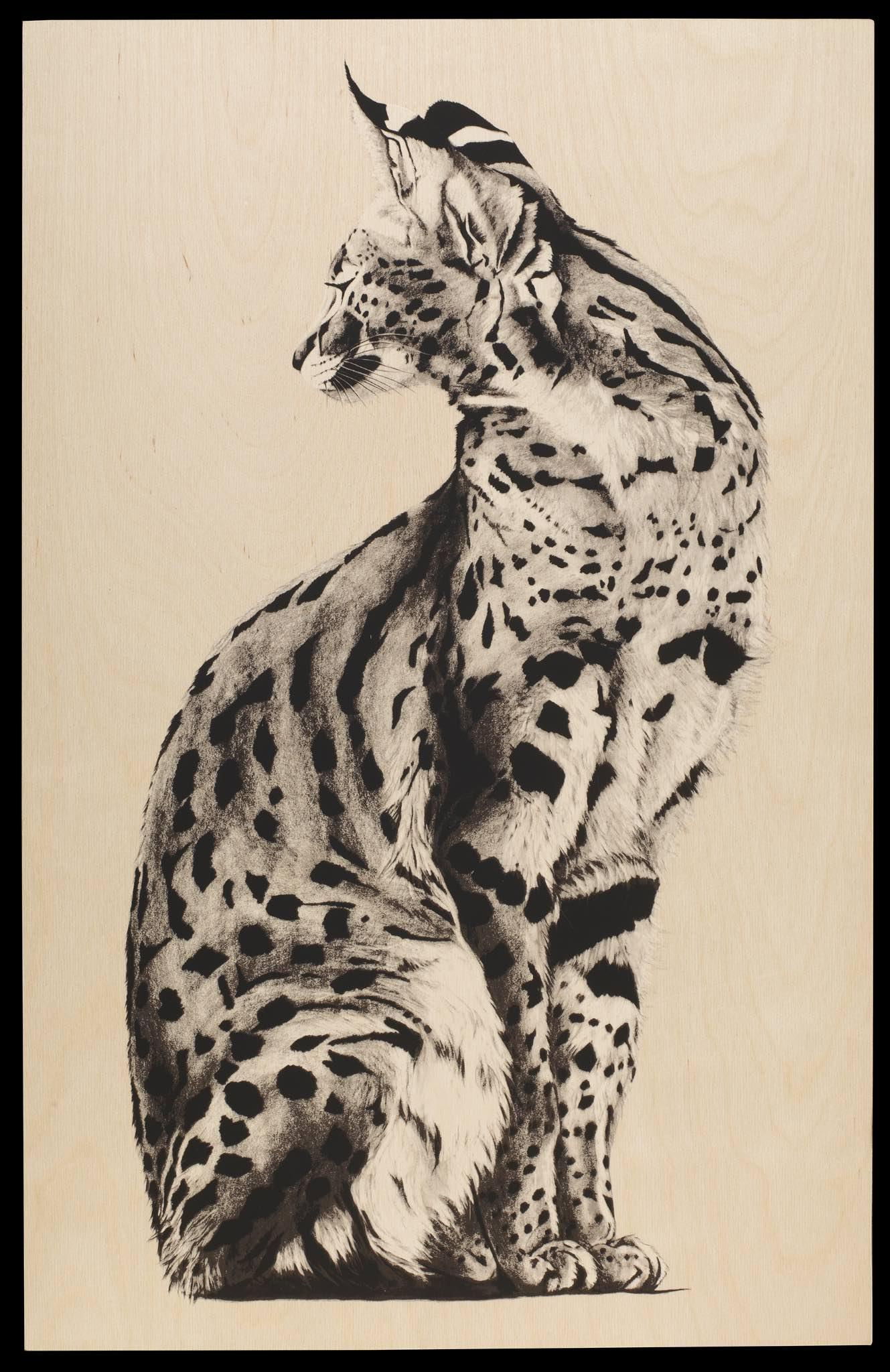 wood serval 11.jpg
