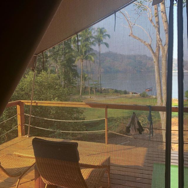 Morning from our tent. Last night a raccoon visited and every morning we get woken at 4.30 by a group of howler monkeys but we love it. #camping #islachiquita #nicoya