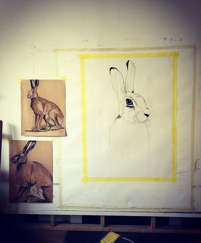 Today I am working on a giant hare. The Hare is tied up in all sorts of folk law and often connected to women wether it be goddesses like Ostara, female fairies, queens, wise old women and witches. What's more the hare has a great affinity with the moon. So there is a lot of good mystical female energy in my studio today. #hare #magic #mysticism #folklaw #art #drawing #femaleenergy