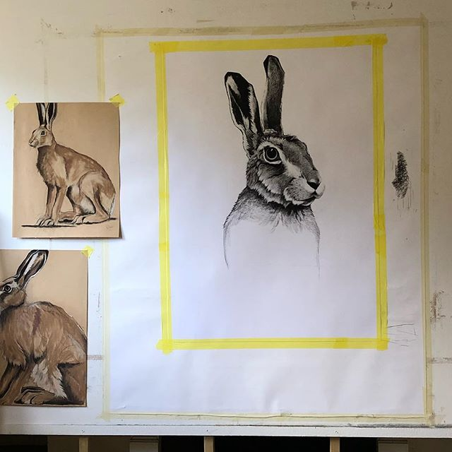 Coming along. Tempted to add a 🎩! 🐇 #hare #artistofinstagram