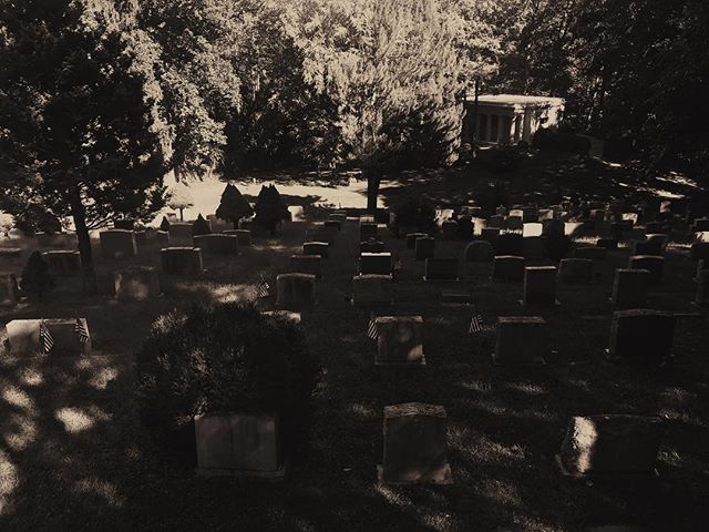 A peaceful audience of monuments captivated by the imperceptible theatre of decay. Back to the Earth, in three acts. · · · #micropoetry #gothic #thelivingdead #summersdyingdays