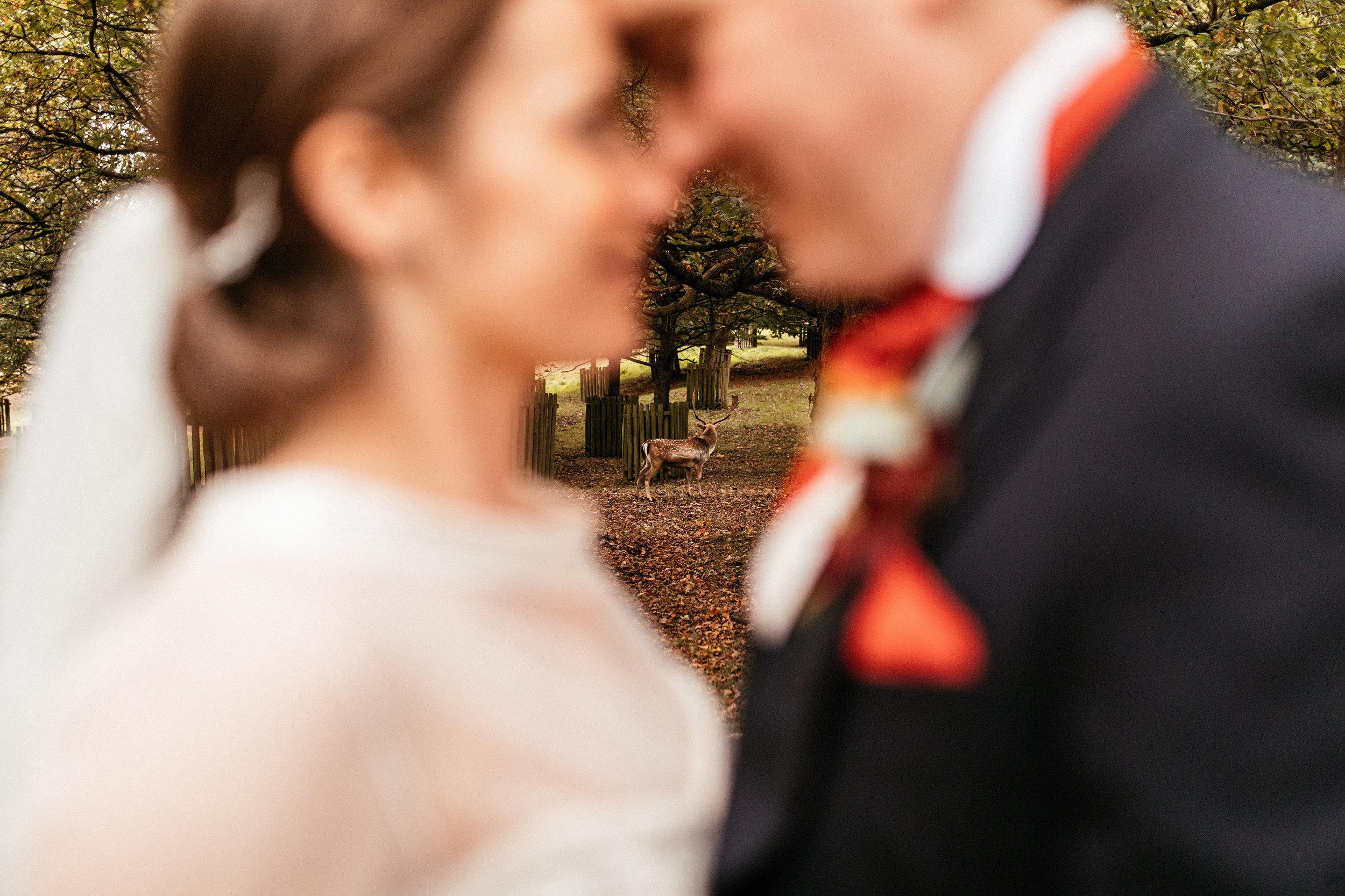 Dunham-Massey-Wedding-Photographer-90.jpg