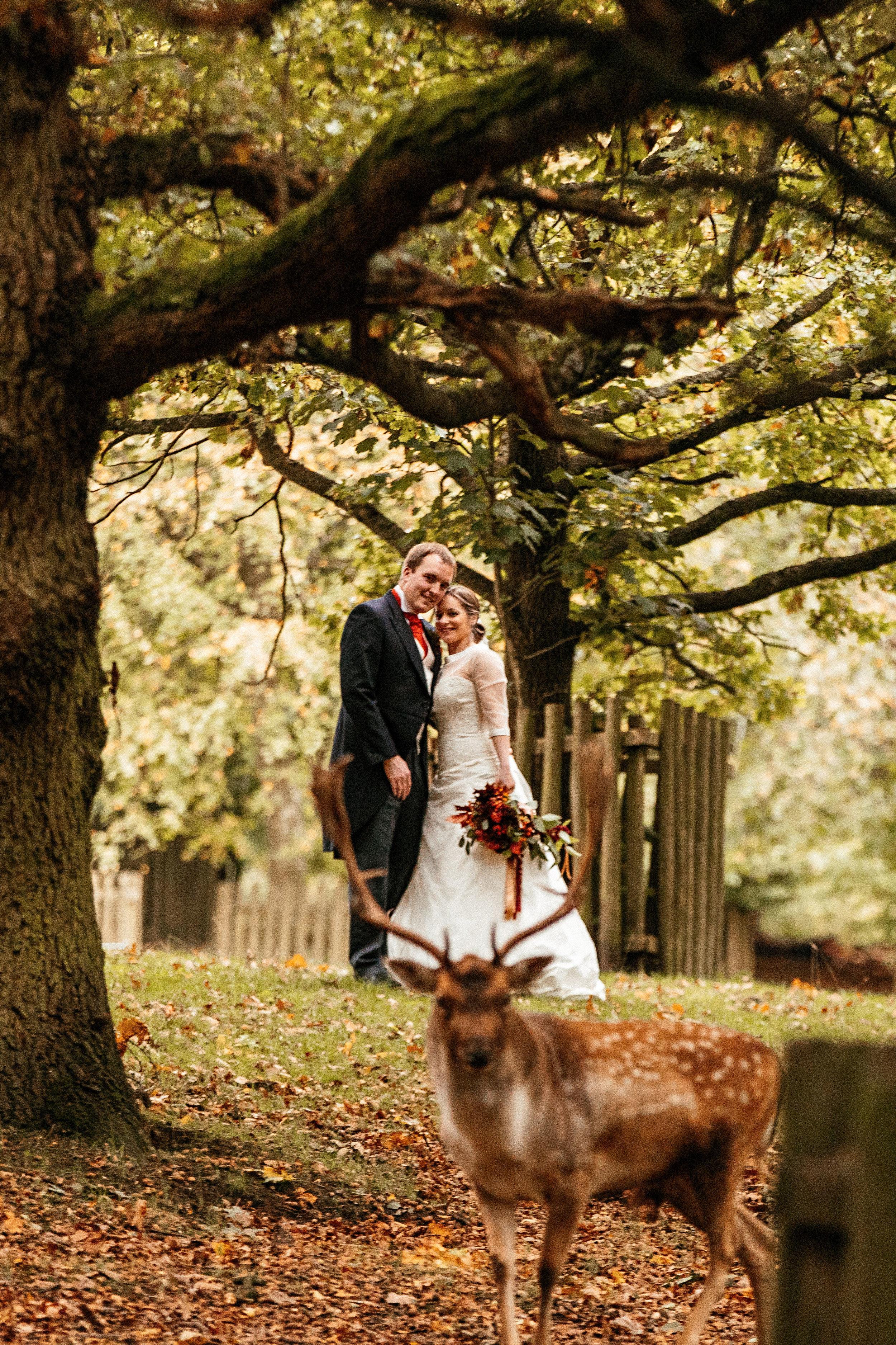 Dunham-Massey-Wedding-Photographer-91.jpg