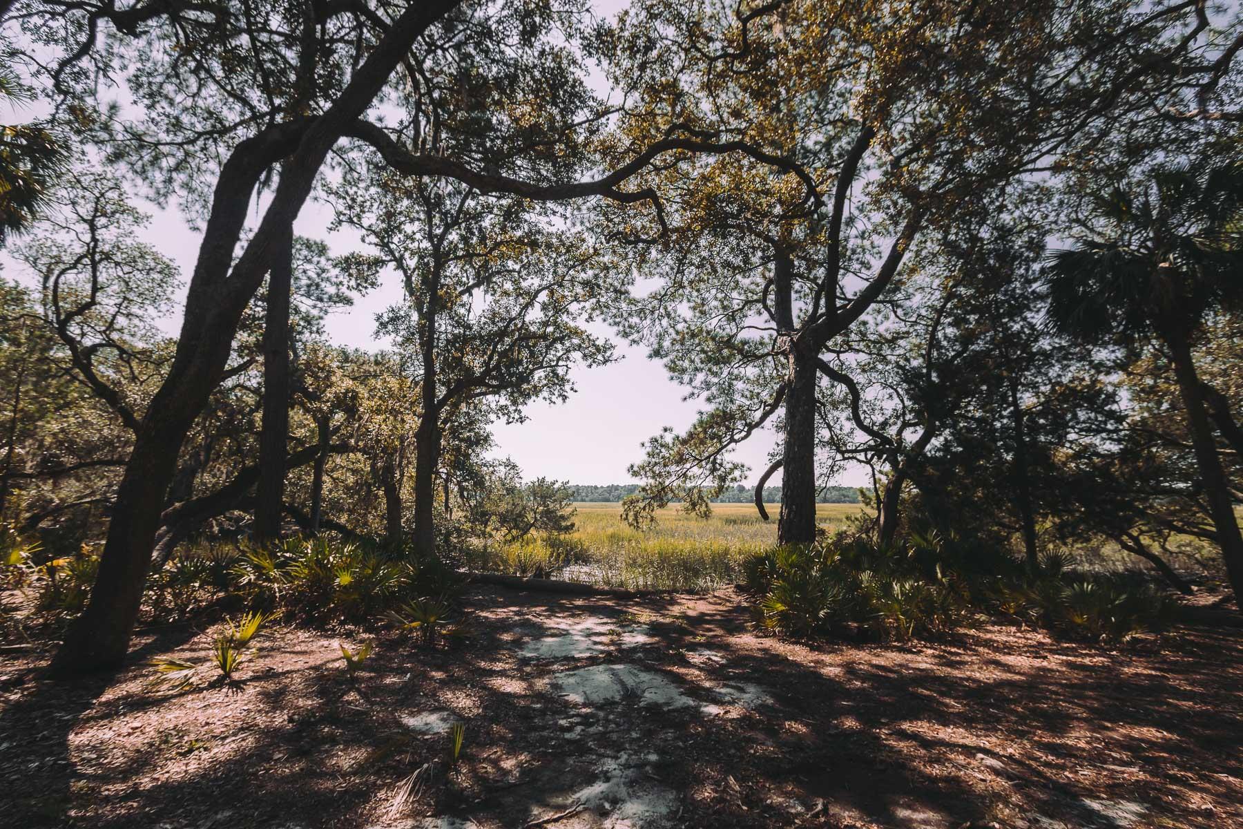 savannah_forblog-27.jpg