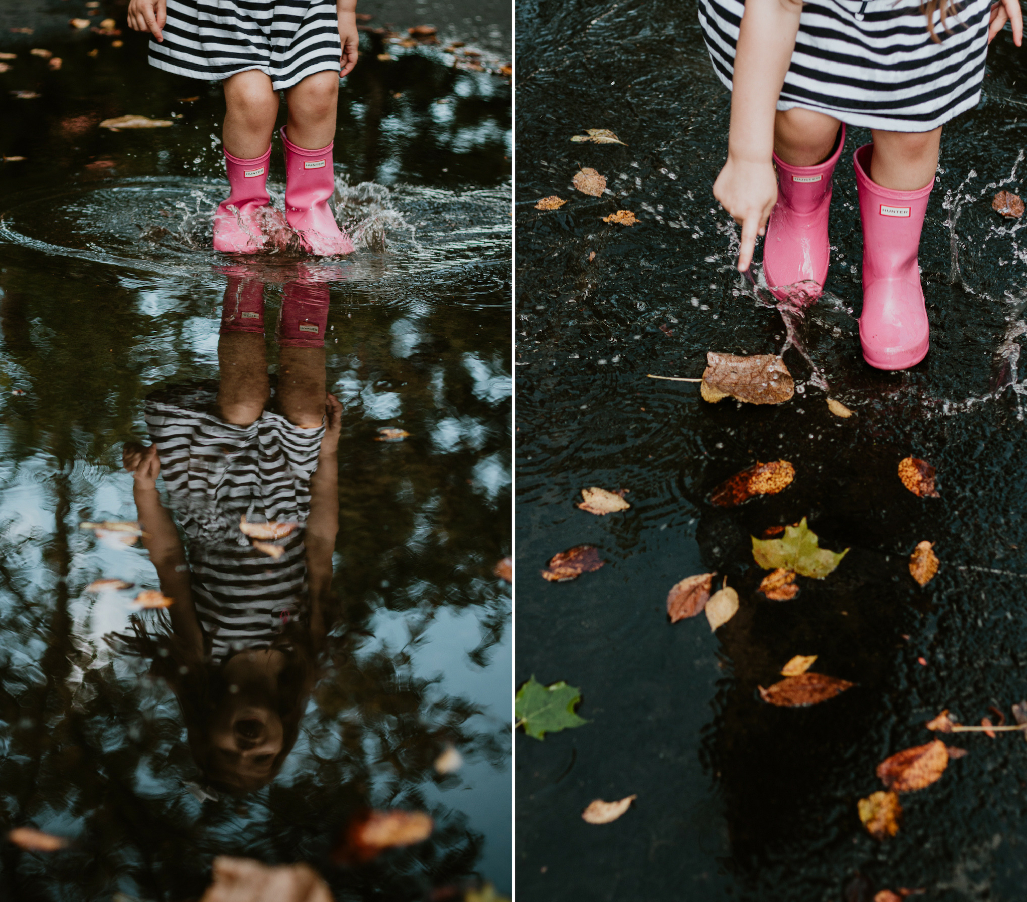 best of fall 4.jpg