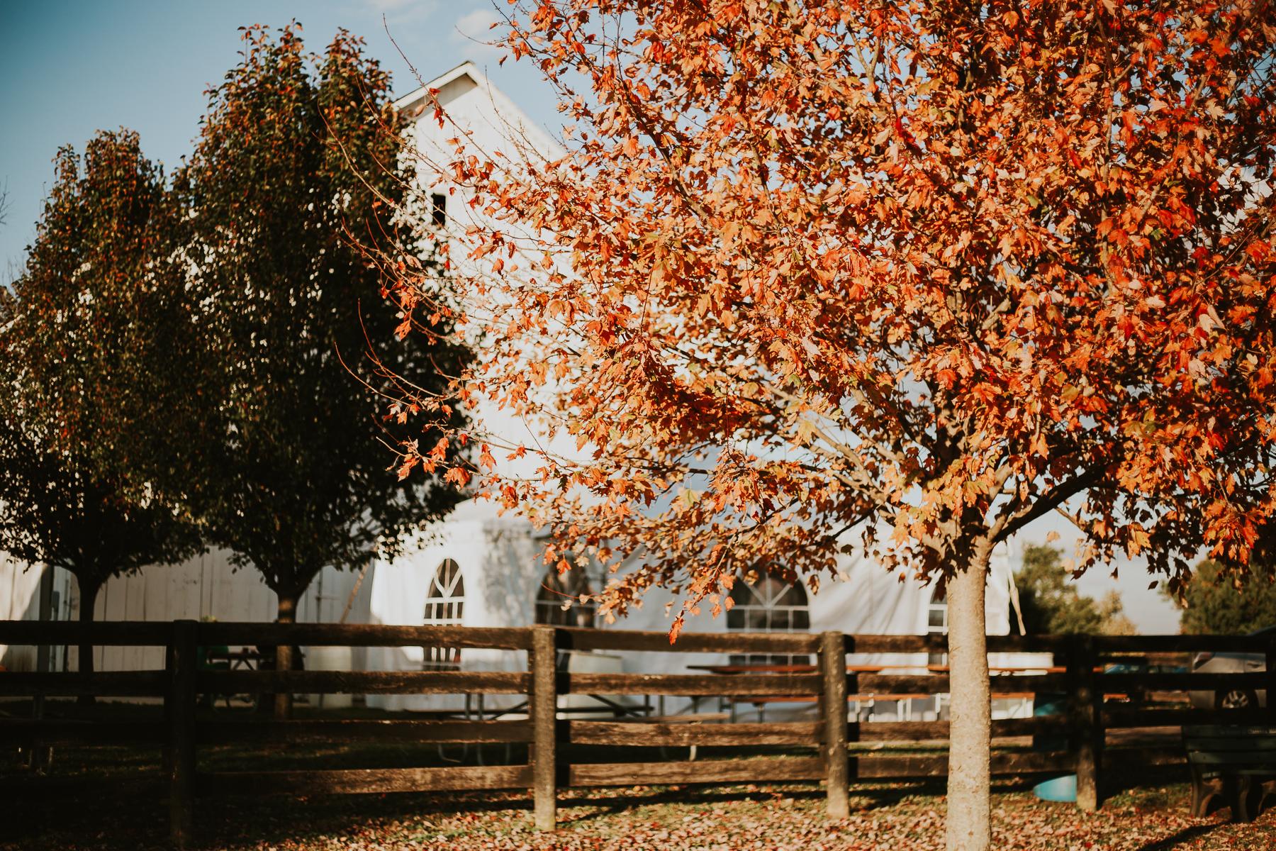 Red Orchard Barn Wedding