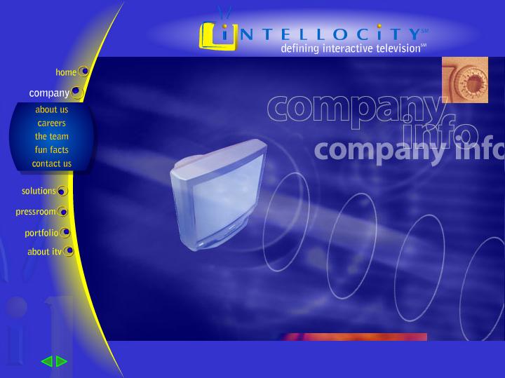Intellocity Website