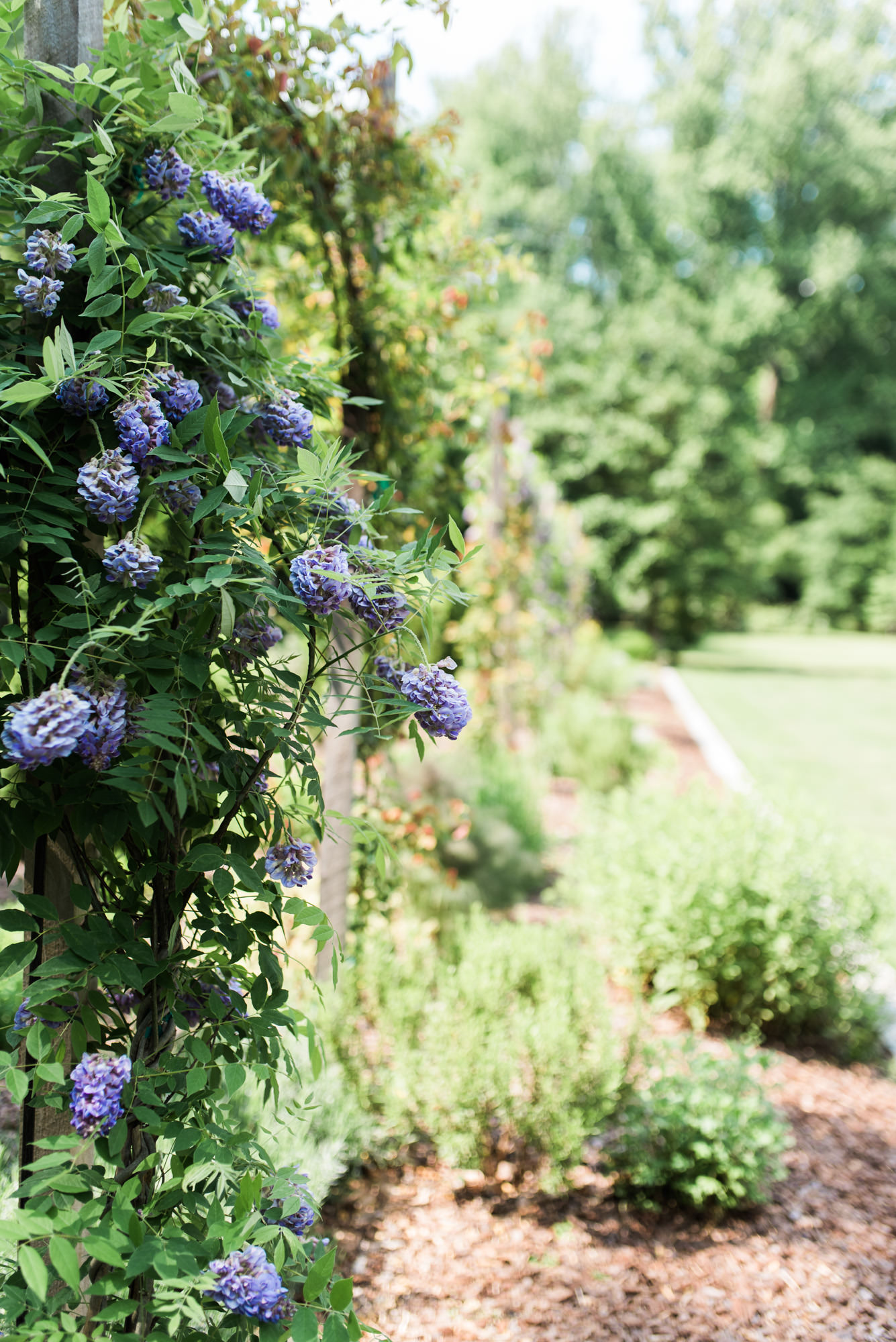 Atlanta-wedding-gardens-44.jpg