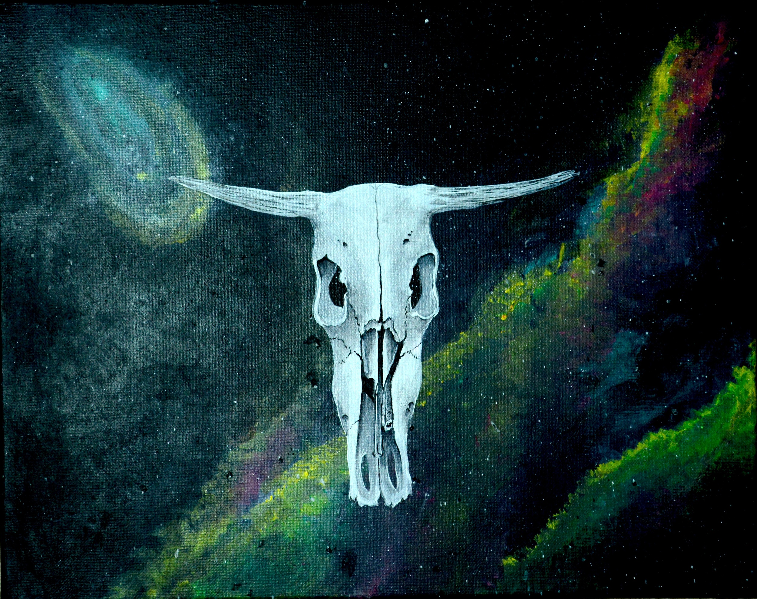 Cow Skull in Space.jpg